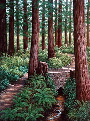 Oil painting of a Redwood path.