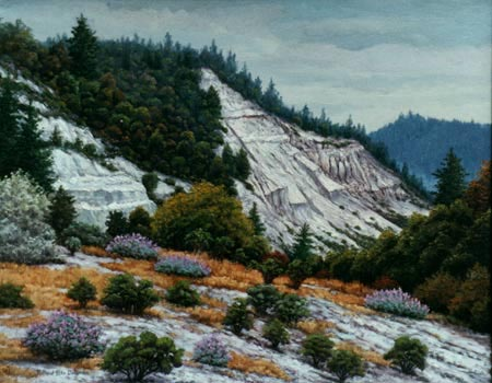 Oil painting of Scotts Valley wildflowers and sandbank.